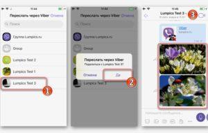 Пересылка и создание скриншота в Вайбере на айфоне