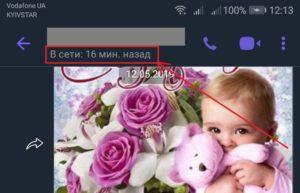 """Статус """"Был в сети"""" в Вайбере"""